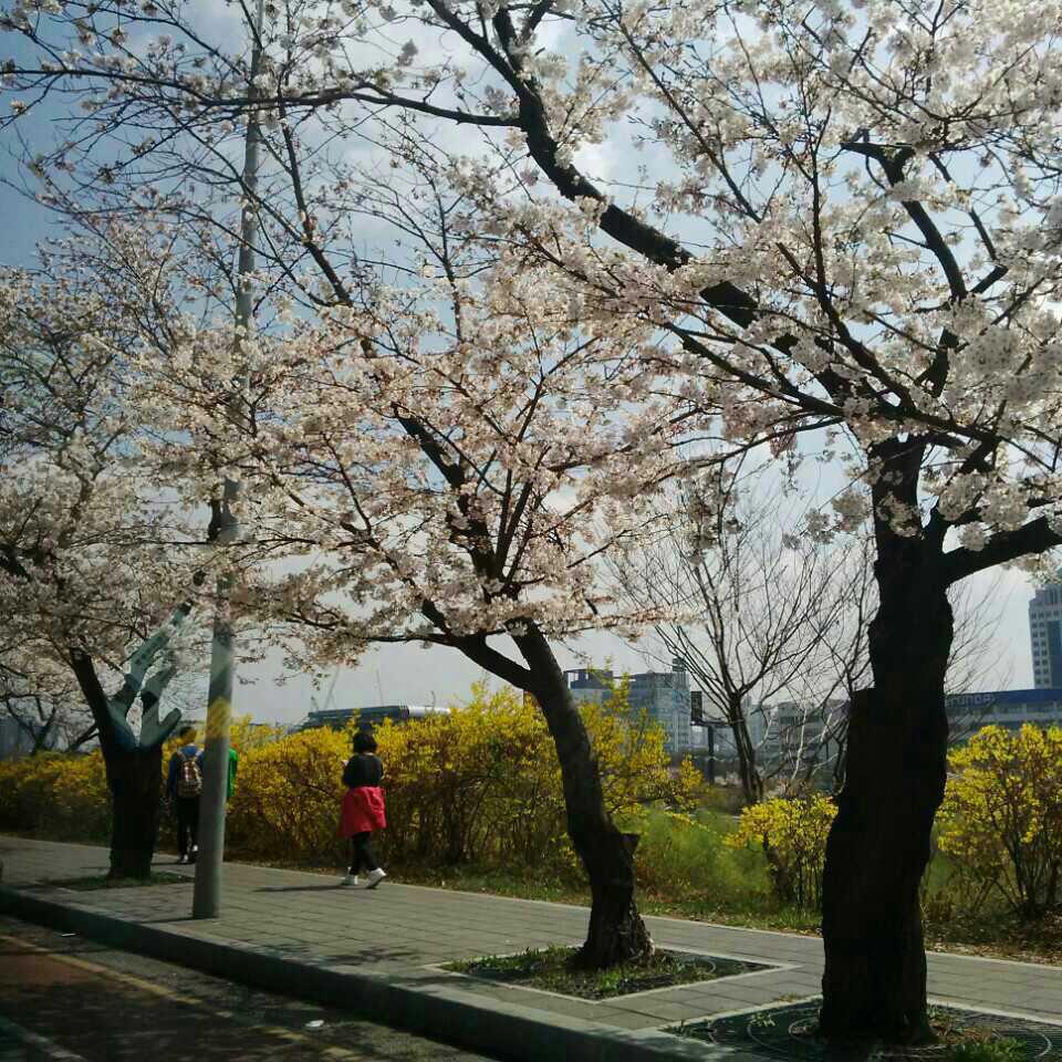 3. 대낮에 한 이별_박진영(feat. 선예) - (연인으...