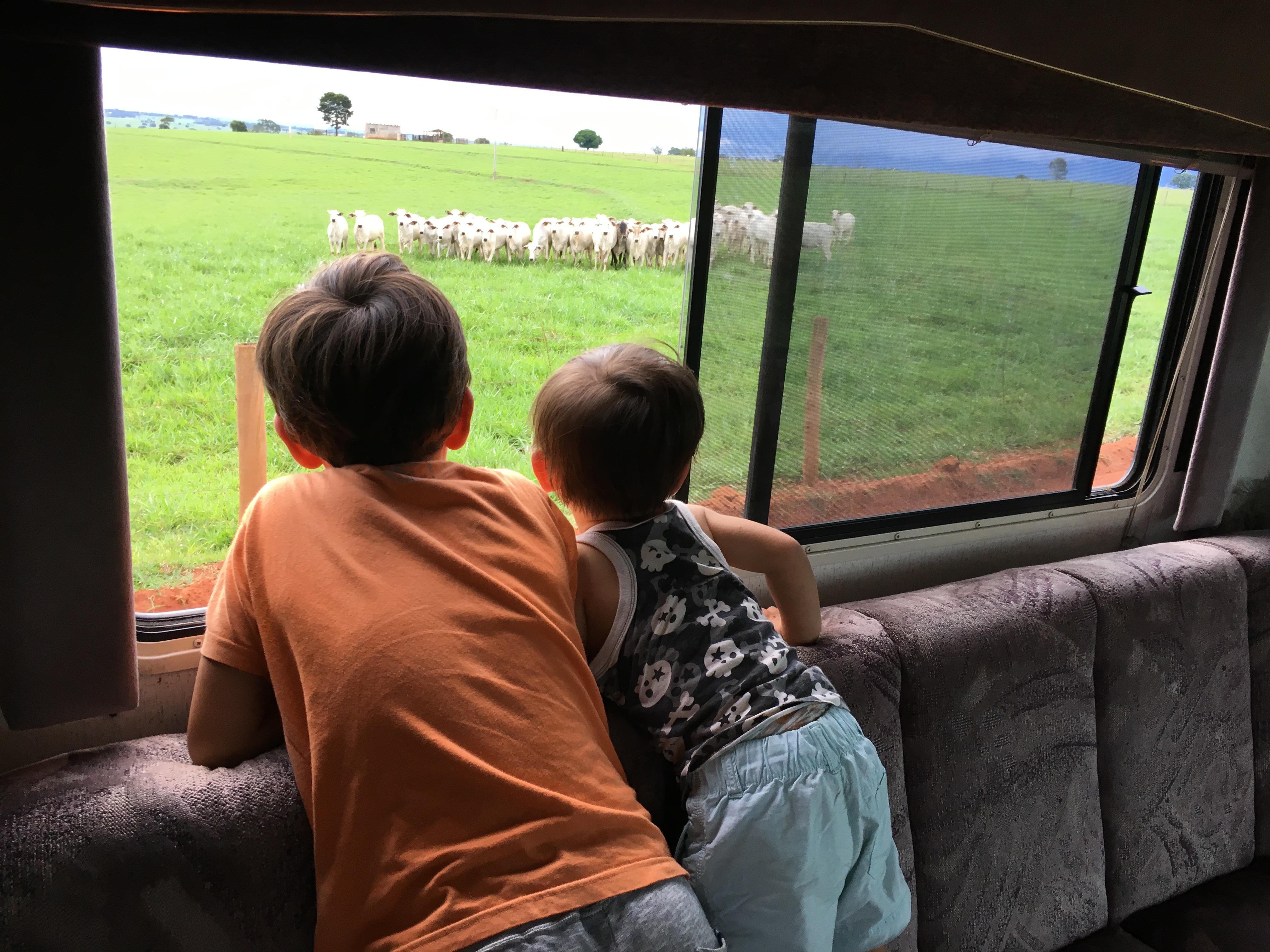 [캠핑버스여행] 아이와 함께 여행하는 삶 - Bonito...