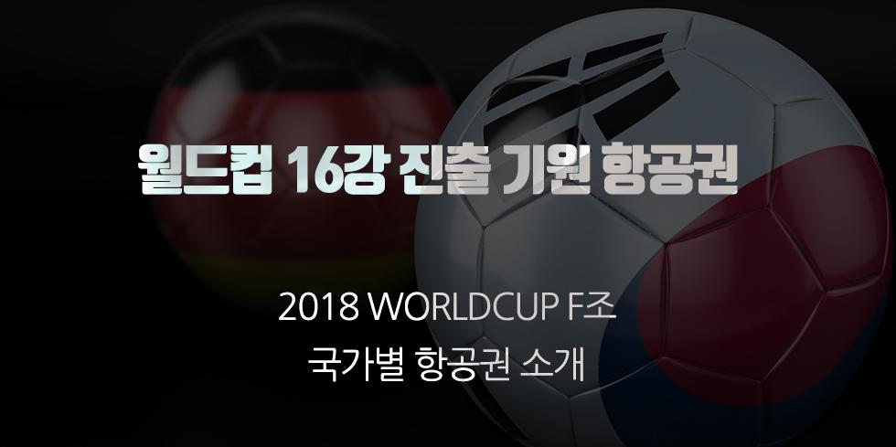 2018년 러시아 월드컵 F조 출전국 항공권 - 2018년...