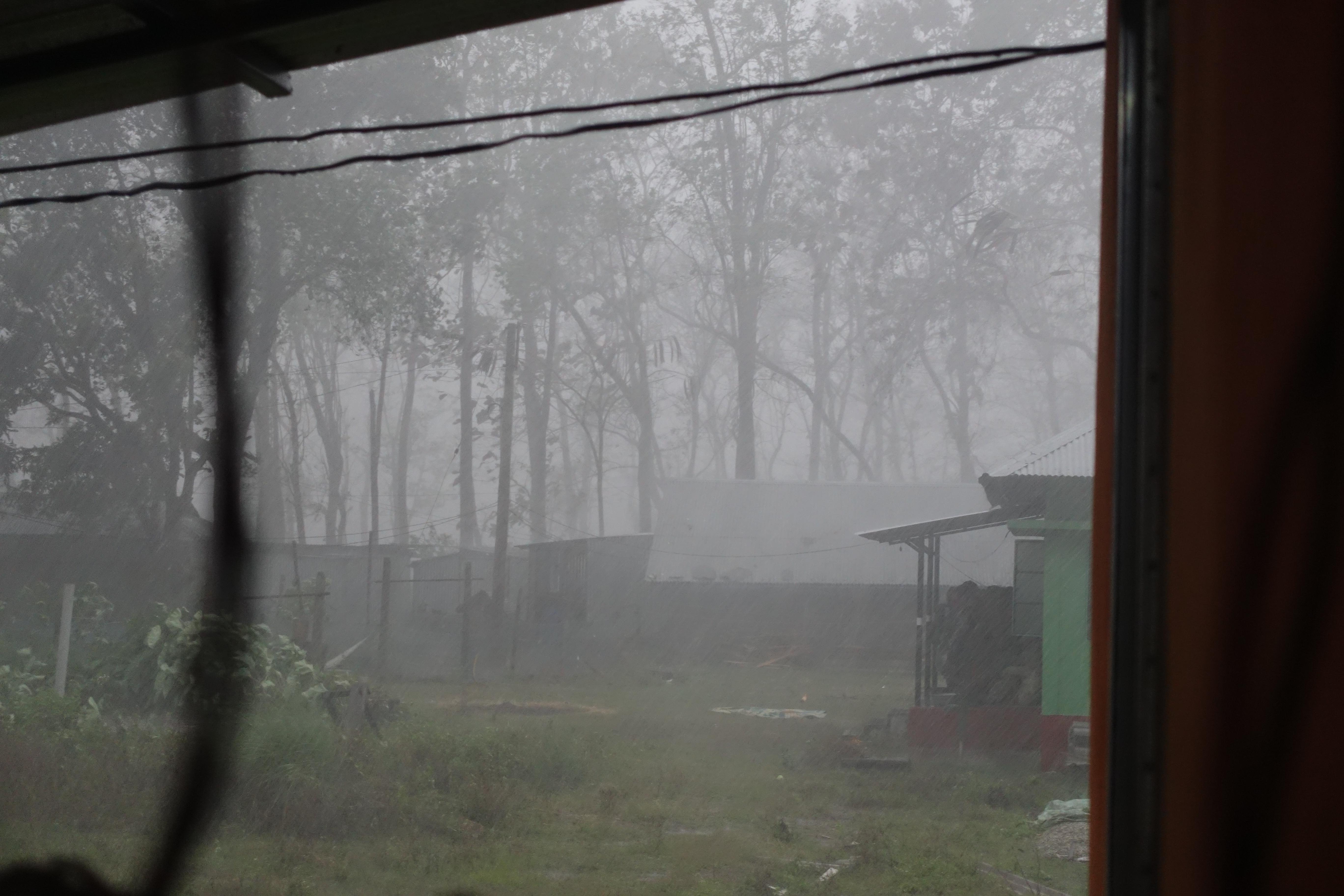 폭우가 내린 어느 오후