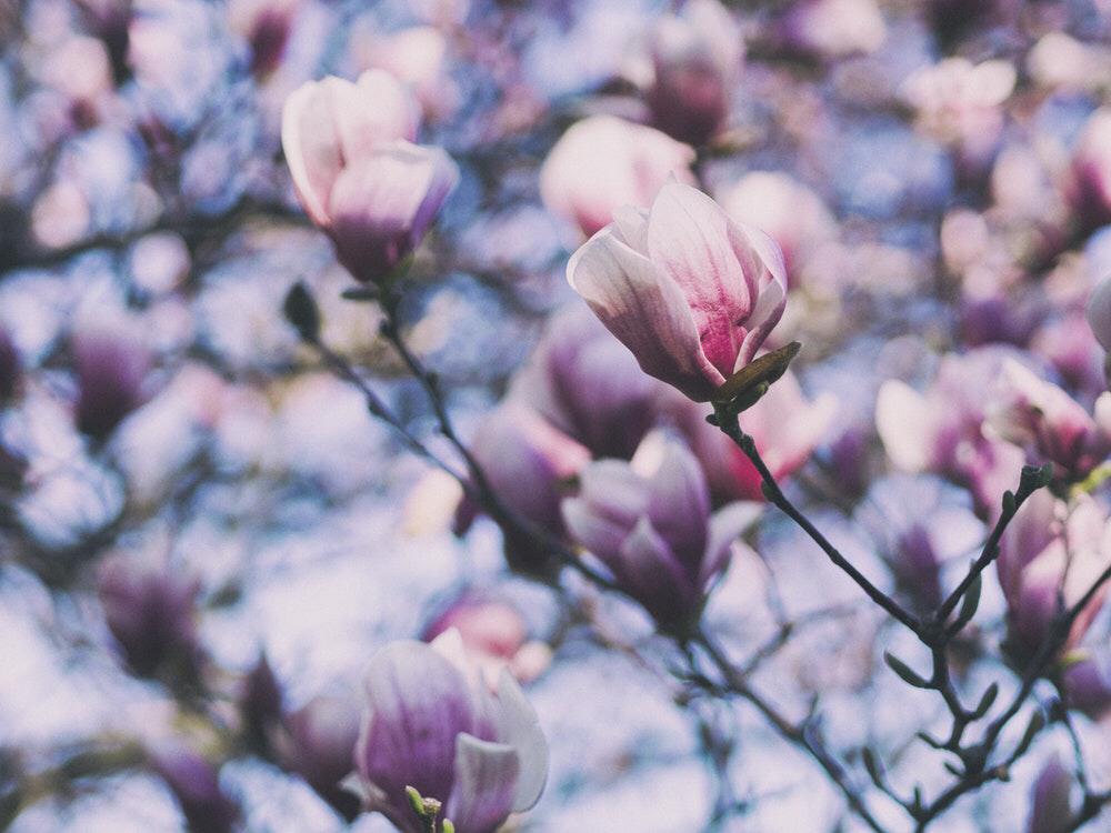 3. 어느 서른 살의 수능 (겨울, 봄) - '수능'이라...