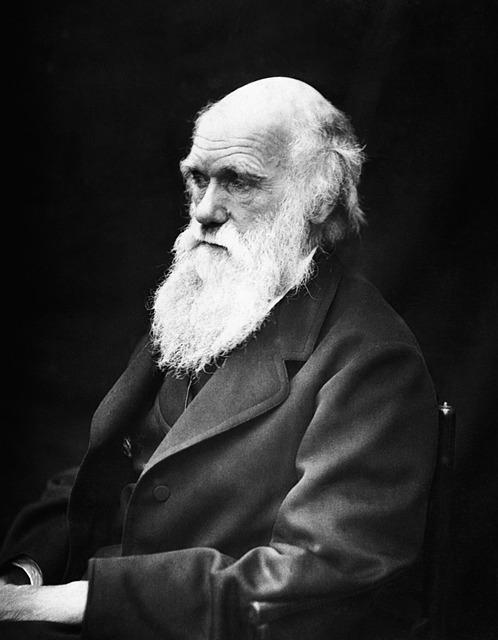진화의 방식(자연선택, 성선택)