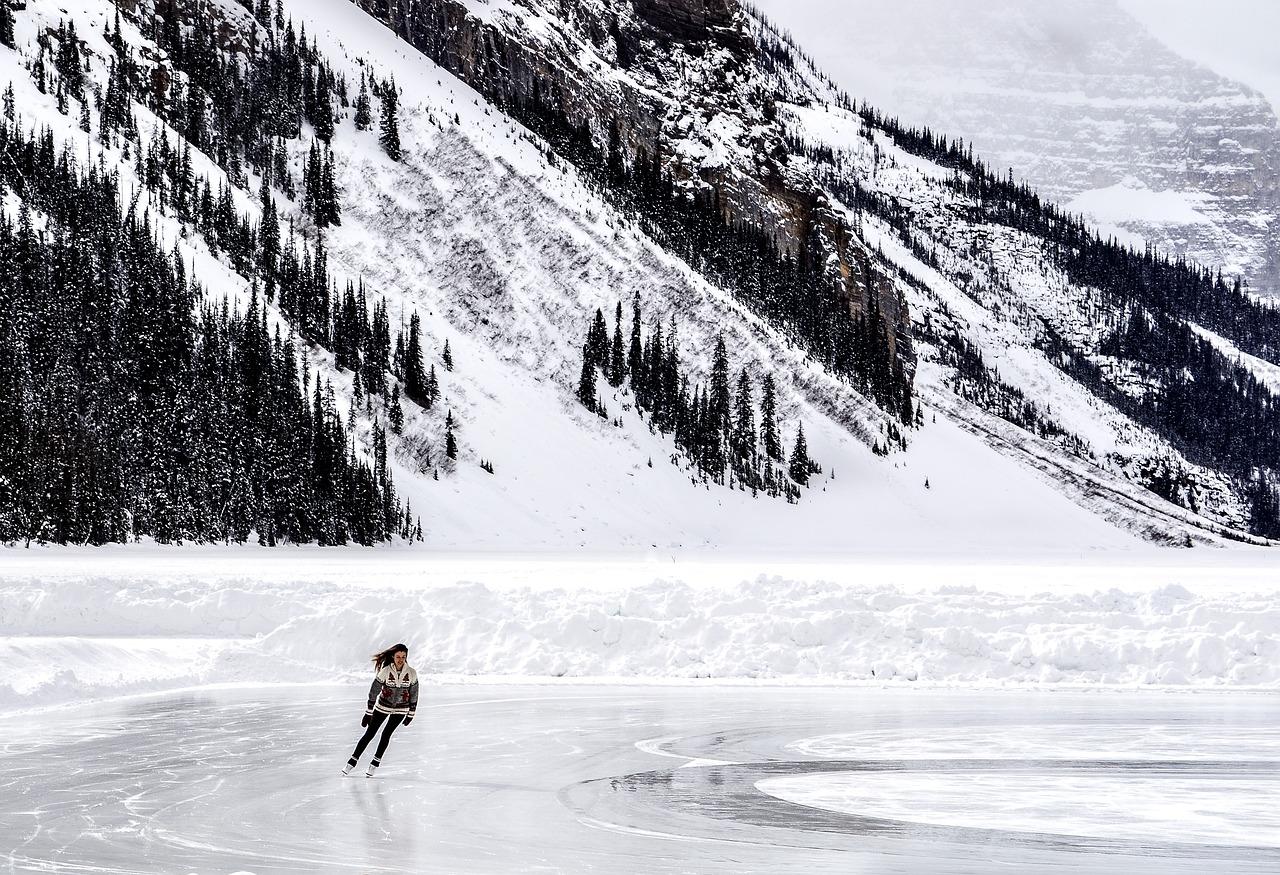 빙상연맹과 파벌 - 정말 파벌만의 문제일까?