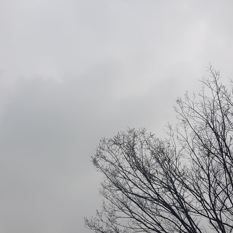 3월 마지막 주의 단상 - feat. 미세먼지
