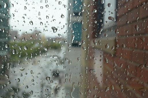 비오는 아침의 사색