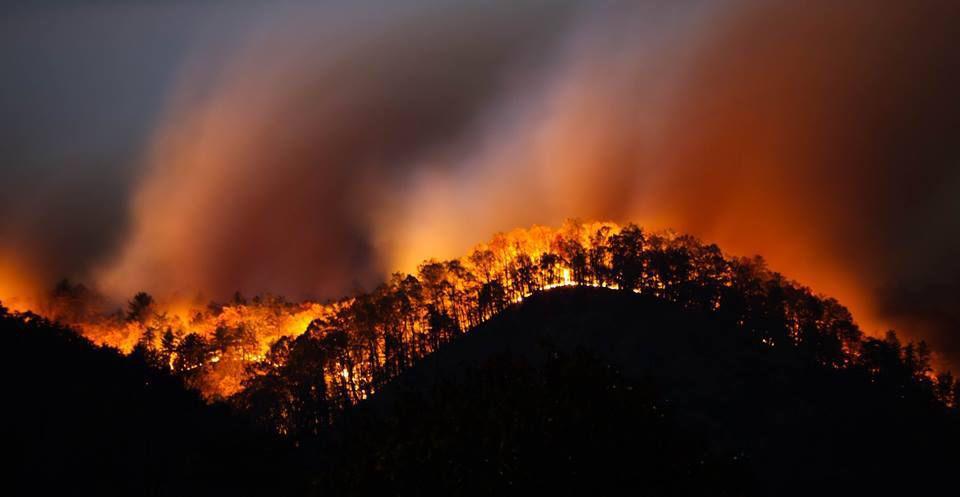캘리포니아 산불 대피에서 배우다 - 체계적인 산불...