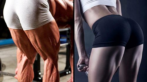 햄스트링 근육을 만들면 생기는 몸의 변화 5가지 -...