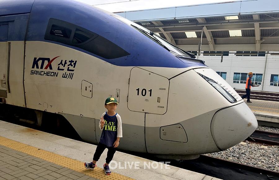 아이와 함께 떠나는 100점 만점 기차여행 만들기