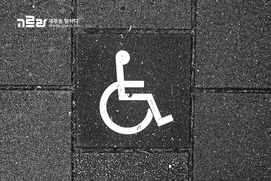 제주도 613 지방선거 휠체어 타고 투표소 가보셨나요?