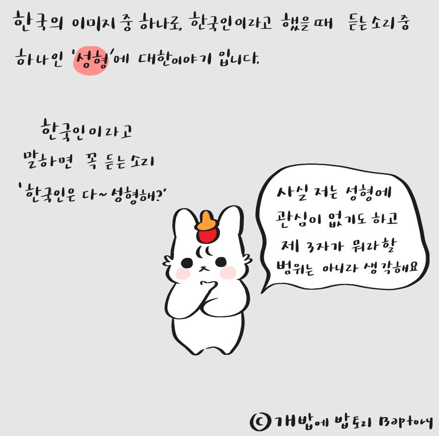 27. 한국인들은 다 성형해? - 개밥에 밥토리