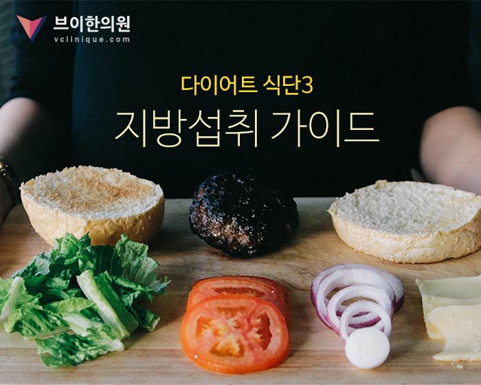 음식&비만3편 - 다이어트식단3 지방섭취가이드 - ...