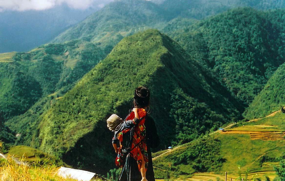 빛과 꽃 - 베트남 여성