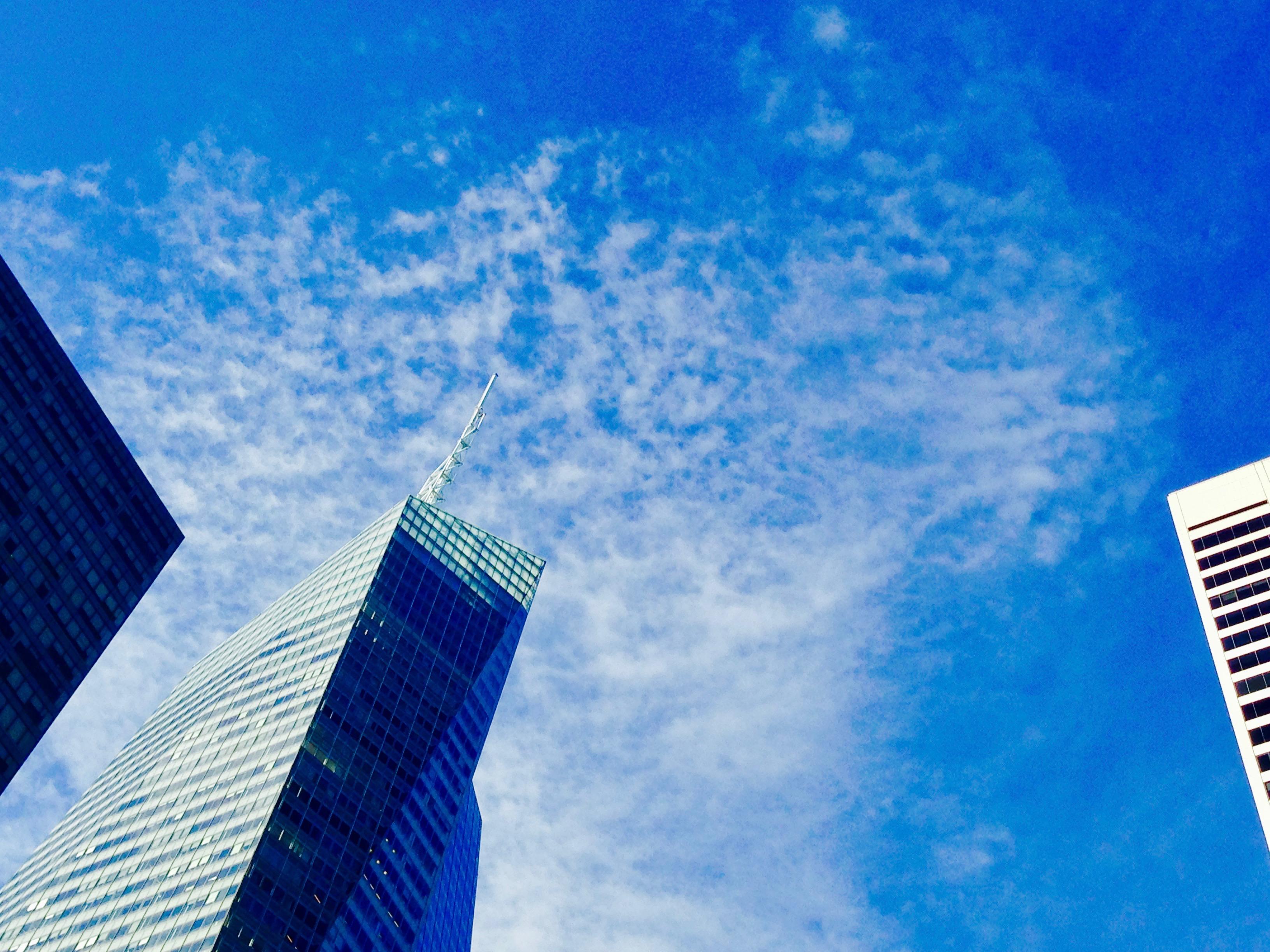 눈이 부시게 푸른 하늘 - 뉴욕의 하늘