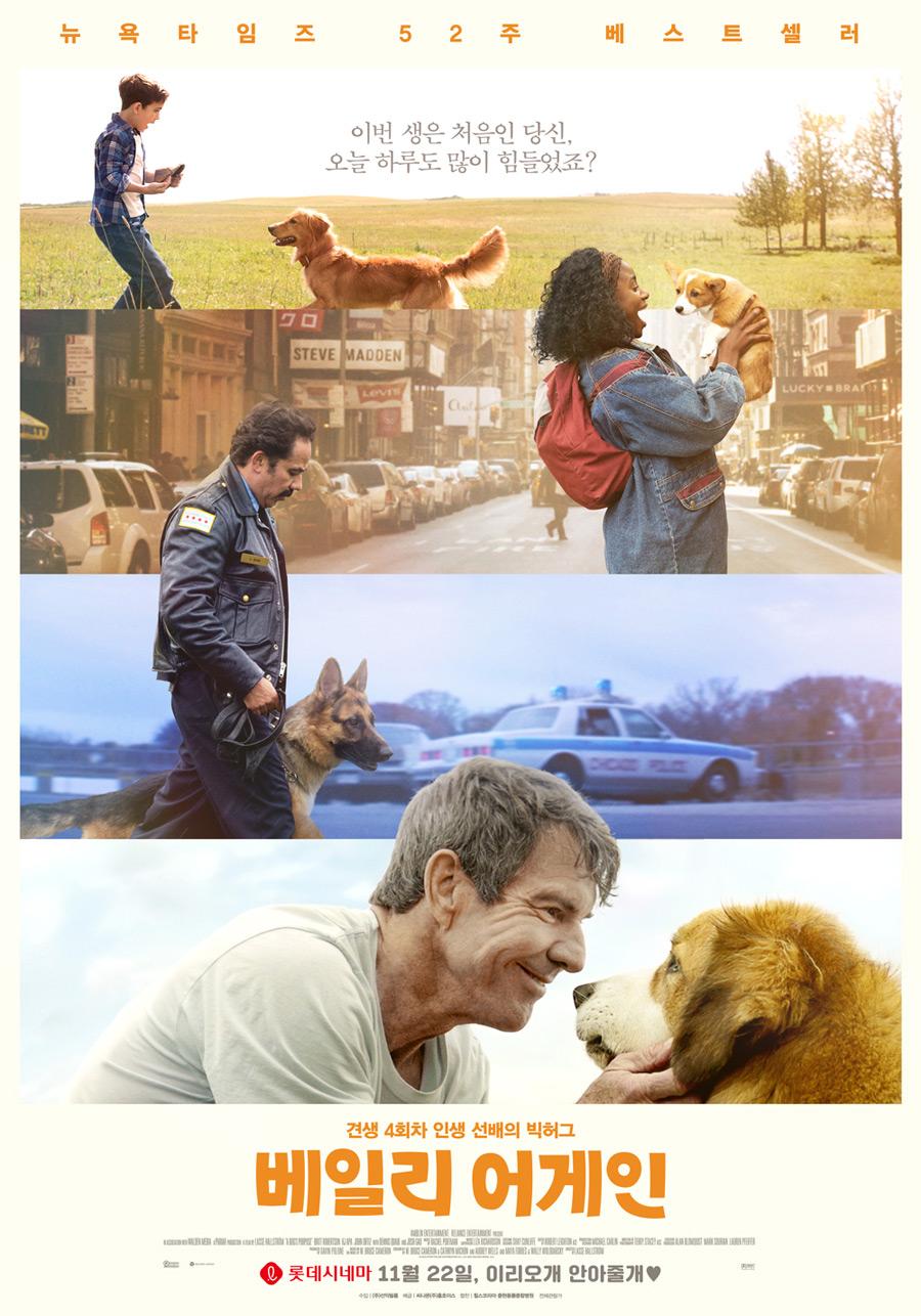 [영화] 베일리 어게인 - 개와 사람이 아닌 우리의 ...