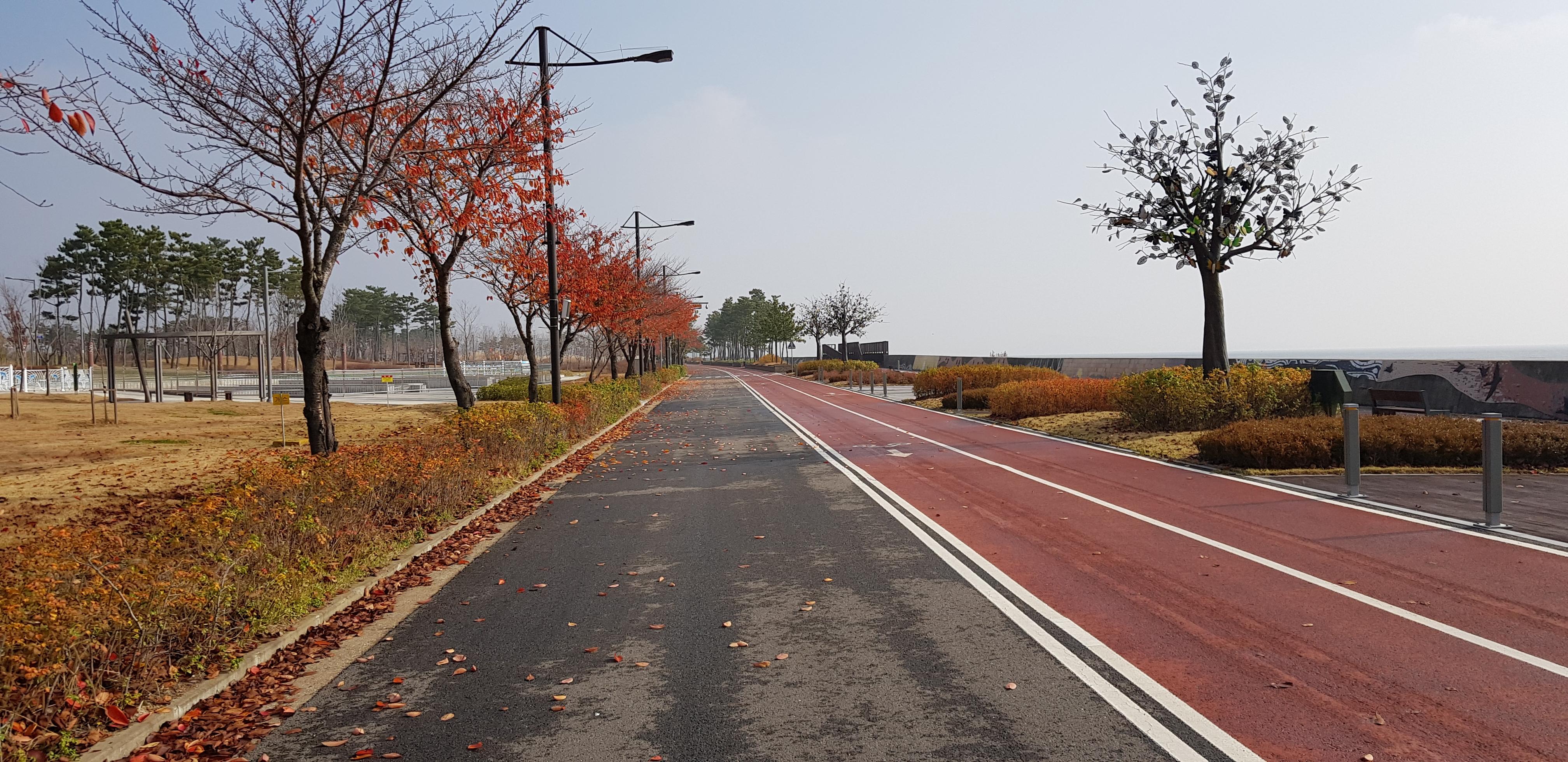 서울에서 가깝고도 먼 섬, 영종도 라이딩 일주 - ...