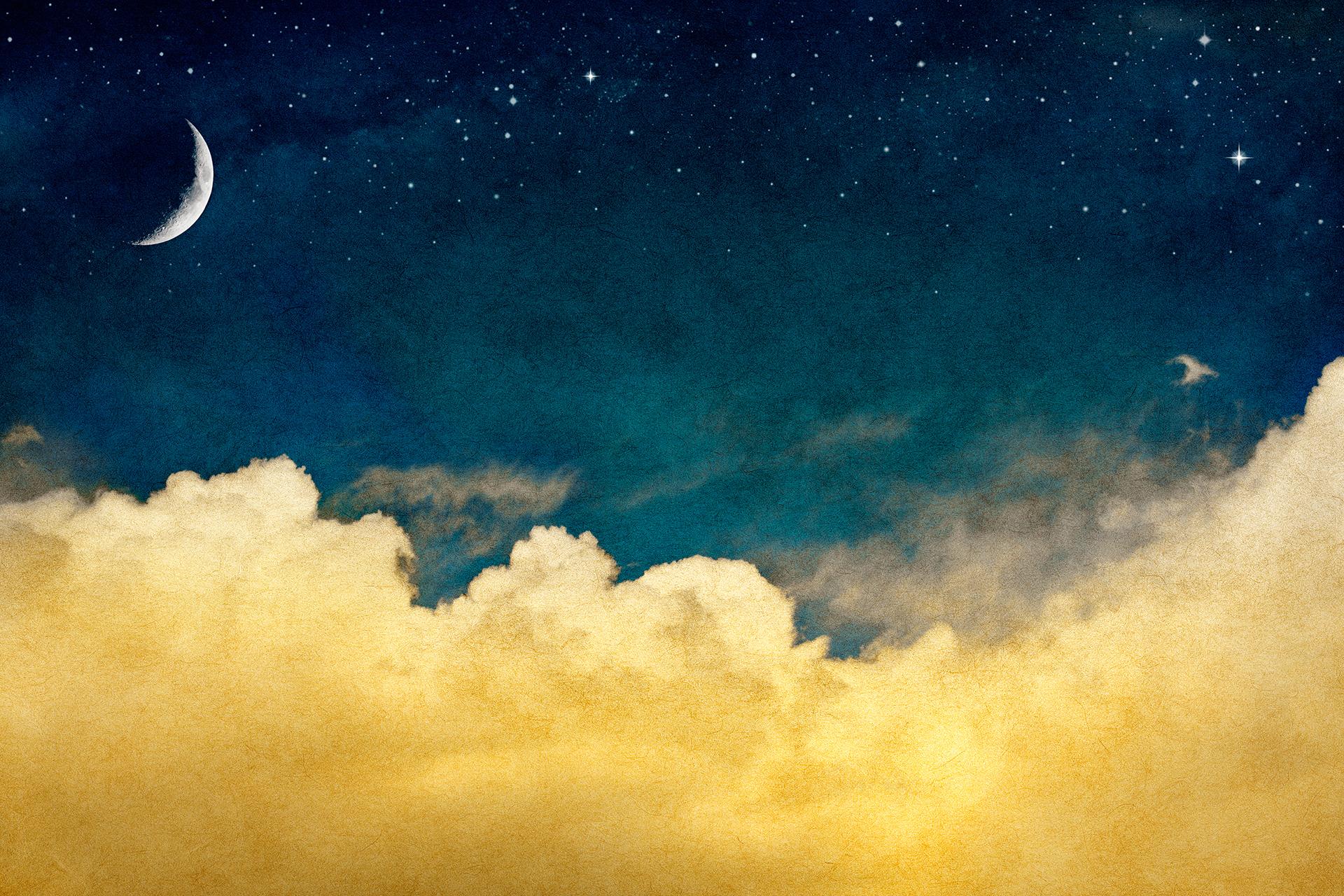 서우의 밤 - 길고 긴, 하루의 끝