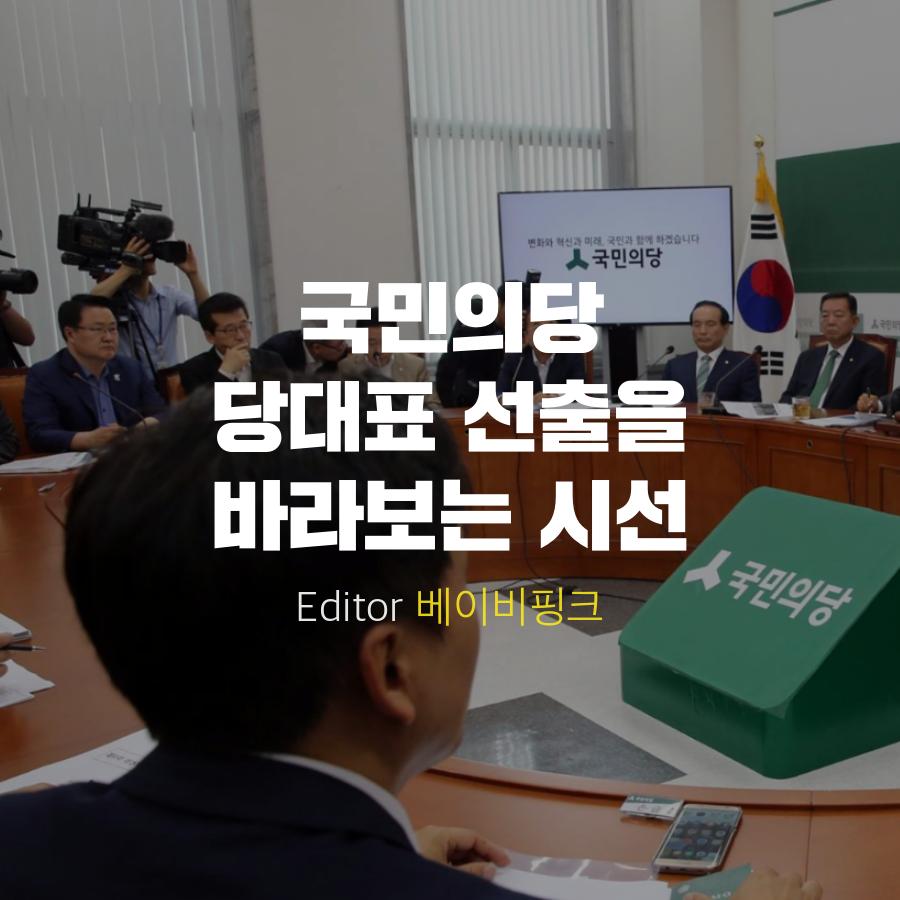 [베핑] 국민의당 당대표 선출을 바라보는 시선 - 2...