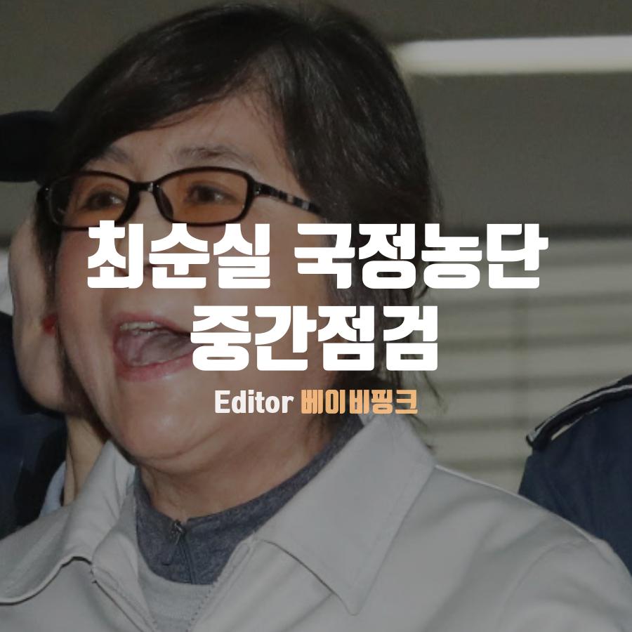 [베핑] 최순실 국정농단 중간점검