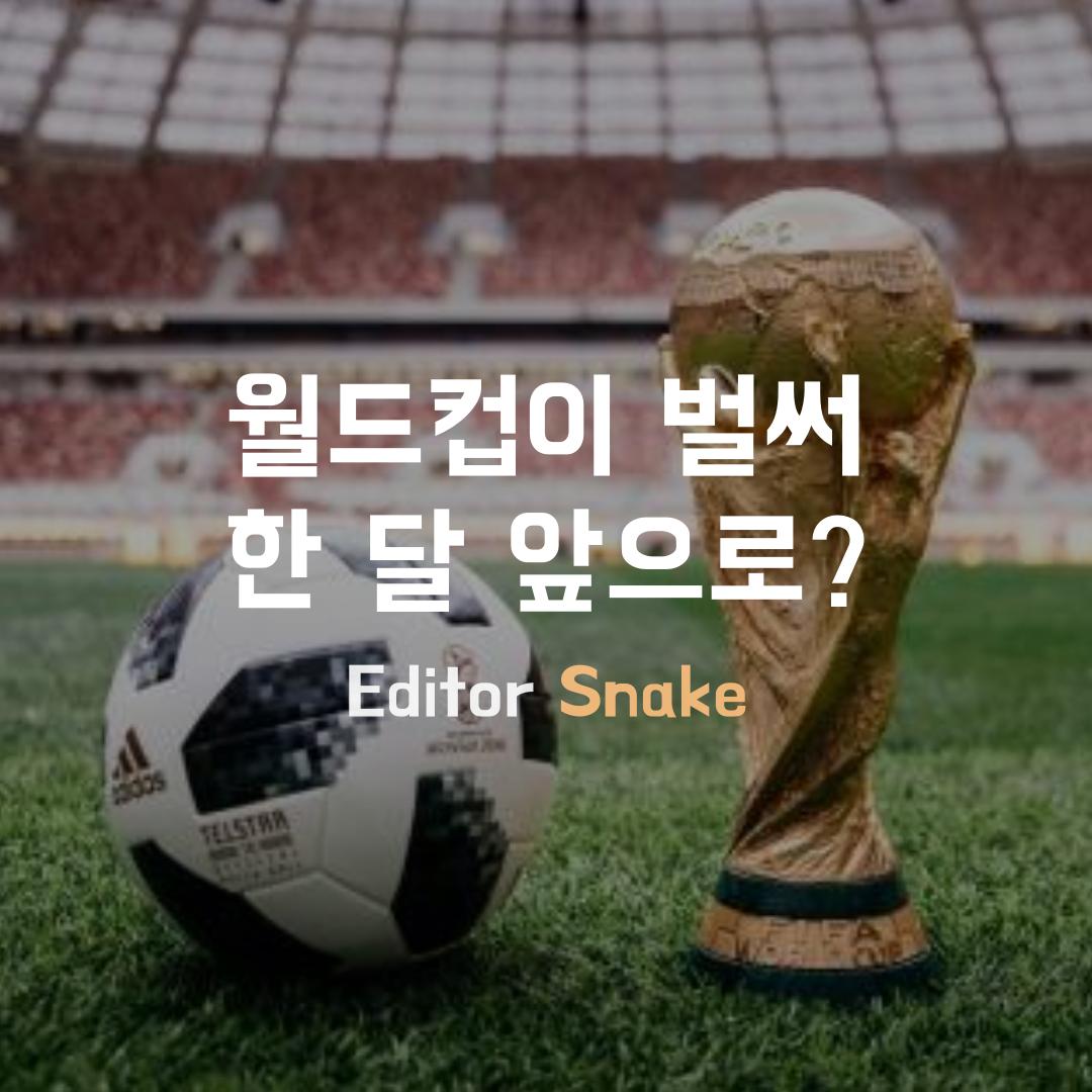 [Snake] 월드컵이 벌써 한 달 앞으로?