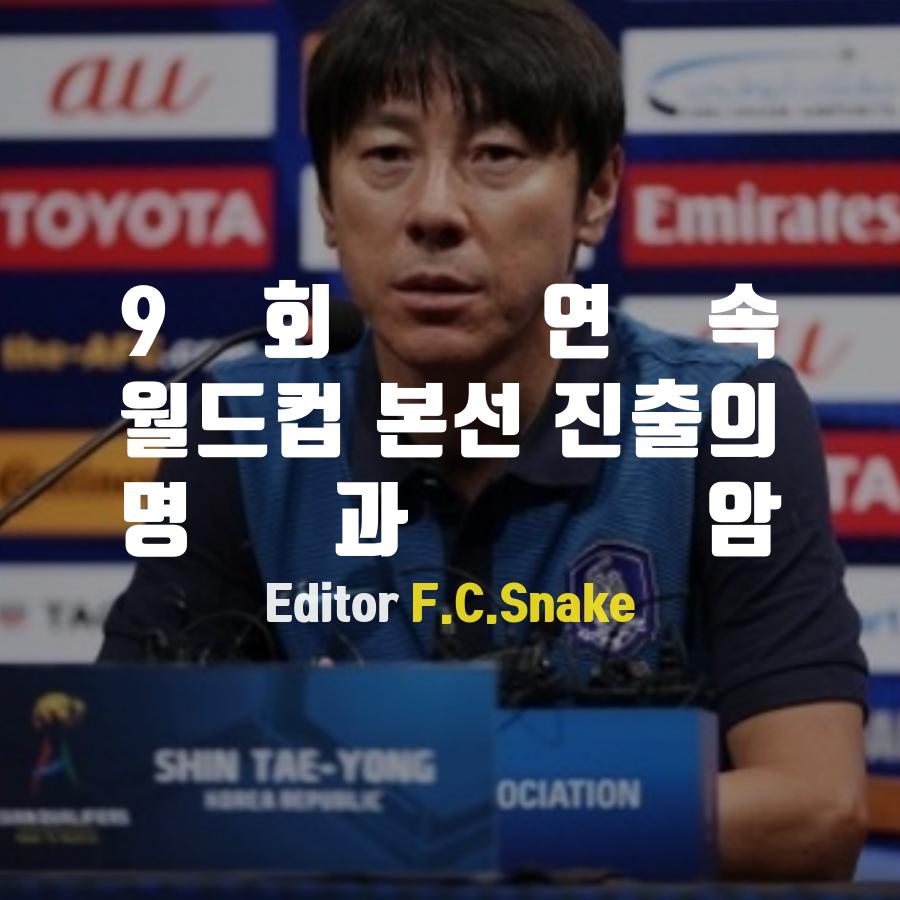 [Snake] 9회 연속 월드컵 본선 진출의 명과 암 - 2...