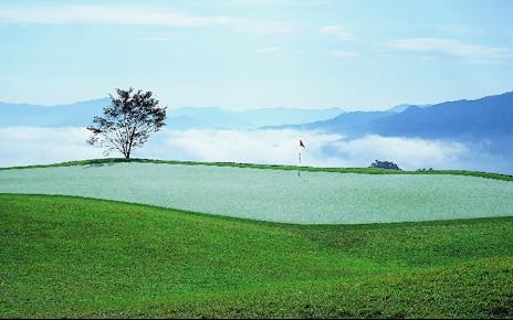 한국 여자 골프 쾌거...위험 요소는 없나?
