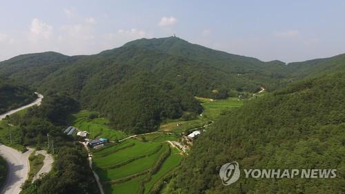 사드 제3부지 후보지 중 한 곳인 성주 염속봉산 [연합뉴스 자료사진]