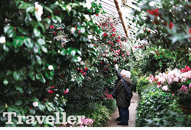 베를린 식물원