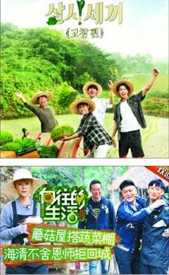중국 후난위성TV의 예능 프로그램'동경하는 삶'의 소개 이미지(아래 사진). 후난위성TV는 tvN의 예능 프로그램'삼시세끼'(위)의 포맷을 그대로 도용했다. /tvN·후난위성TV