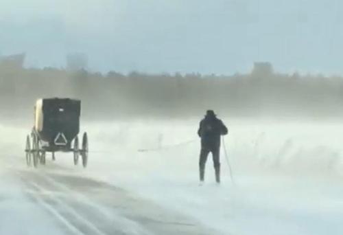 [미국서 '마차 스키'를 타는 남성] [출처 : 페이스북]