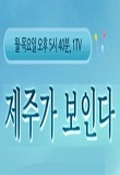 생방송 제주가 보인다 상세정보