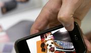 ▲ 스마트폰으로 잡지를 비추자 강아지의 동영상이 화면에 떠오른다.