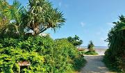 이리오모테 섬(이리오모테지마, 西表島)