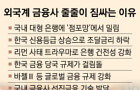 [뉴스 분석] 한국, 외국계 금융사엔 '넘사벽'