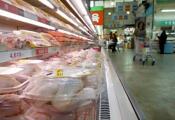닭고기 덜 익히면 급성장염 유발하는 캄필로박터균 감염