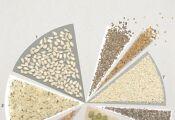 씨앗과 기름