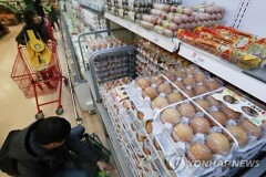 값 오른다..계란도, 닭고기도, 수입쇠고기도, 채소도(종합)