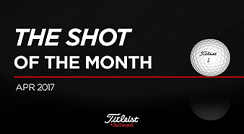 The shot of the month 4월