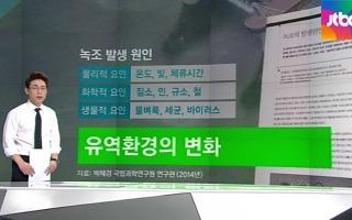 [팩트체크] 낙동강 녹조 생활폐수 탓?..확인해보니