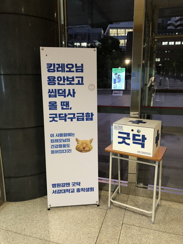 [유머] 서강대학교의 자랑 -  와이드섬