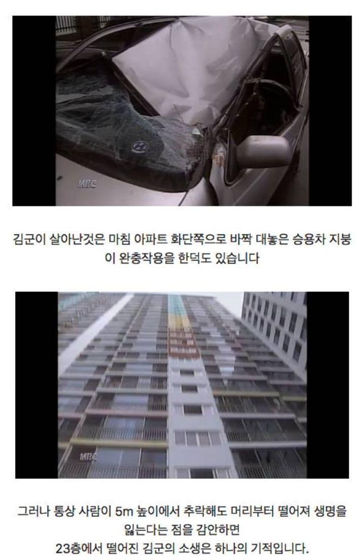 23층에서 추락 후 생존