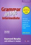 Grammar in Use Intermediate 세이펜 버전