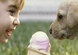 아이와 반려동물, 소중한 친구되는 법