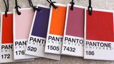 팬톤에서 선정한 2015년, 올해의 컬러는 무엇이죠?