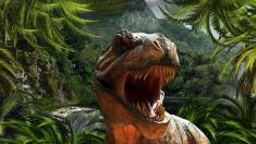 공룡은 왜 멸종했나요?