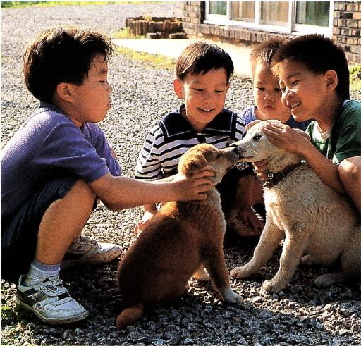 개와 노는 어린이들