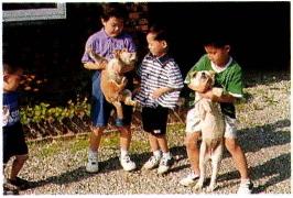 사람과 가까운 애완 동물인 개