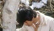 고로쇠나무