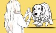 당신이 뭔데 개를 키우라 마라 하는 거요?
