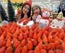 [동영상] 이마트 국내산 딸기 할인 판매