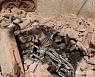 '이슬람 성지' 메카서 자살 폭탄 공격